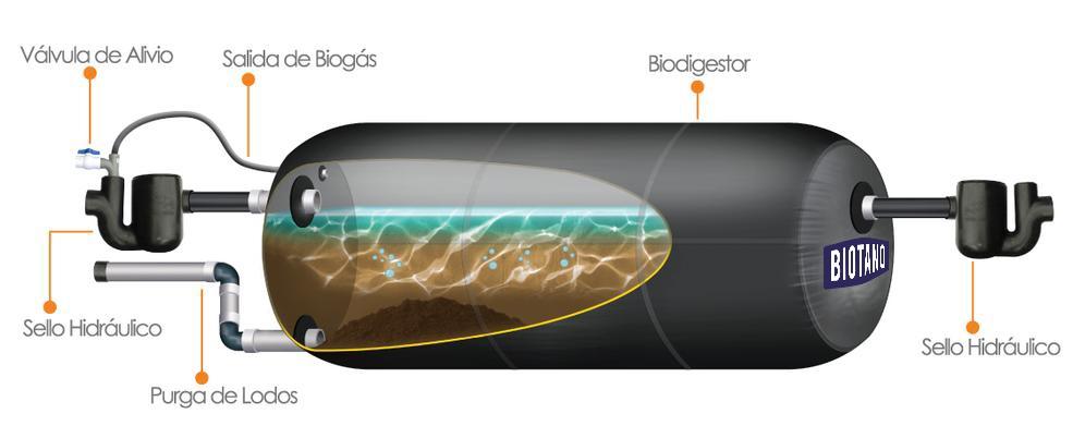 biotanq